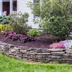 Landscaping 101: Why Should I Mulch?