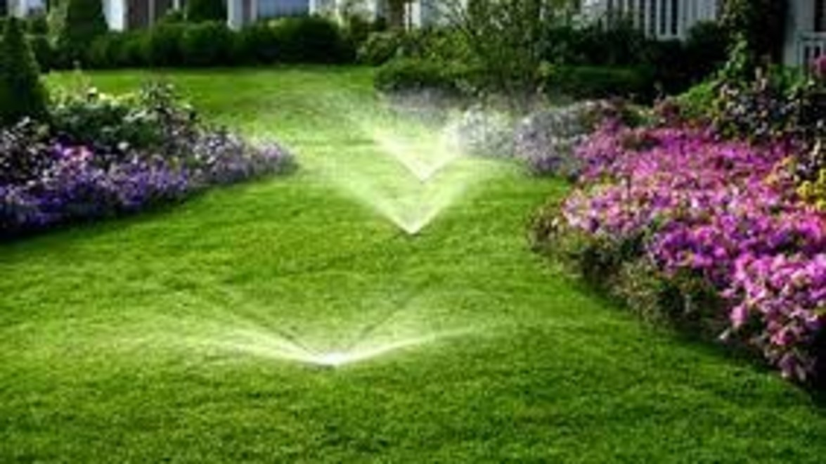 Water Smart Irrigation Professional program could save you money