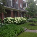 7 Tips To Enhance The Curb Appeal Of Your Condominium