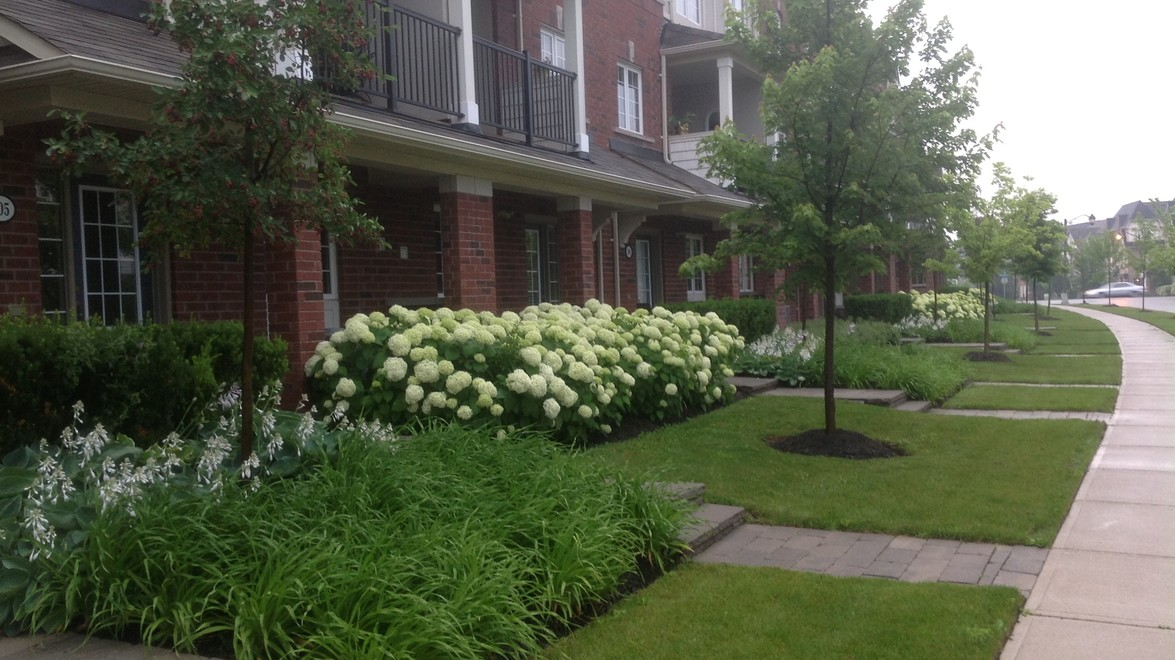 A condo that chose to enhance the curb appeal with professional landscaping